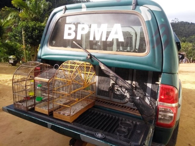 Polícia Ambiental apreende arma e pássaros silvestres em zona rural de Ibiraçu-ES 10